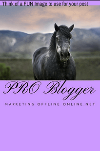 Fun Images Pro Blogger